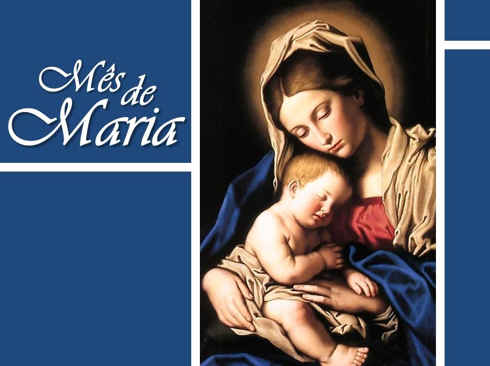 Portal da Palma  Novenário de Maio teve início no último domingo, 01 a704a9c31b